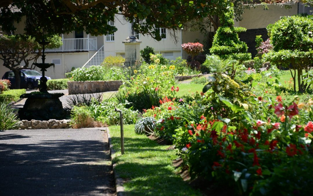 Vue du jardin de la Compagnie se trouvant en face de l'appartement du marquis de Montchenu