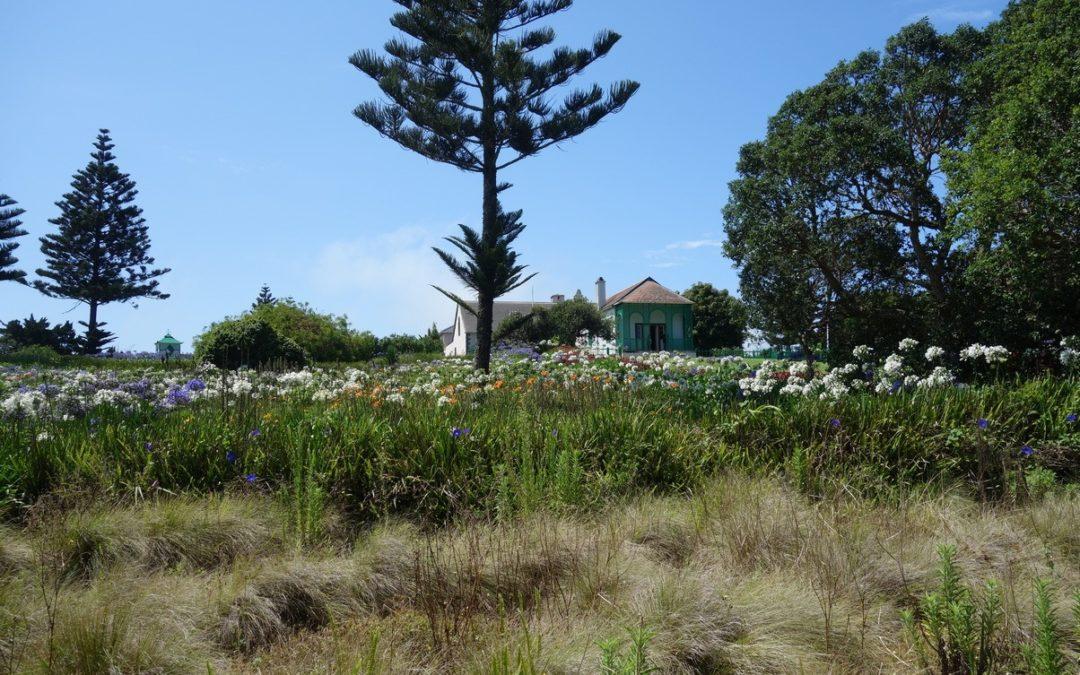 état actuel du terrain où se trouvait ce jardin des plantes aromatiques. Aujourd'hui, cette parcelle est utilisée comme vitrine aux espèces endémiques à l'île.